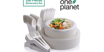 Eco-Friendly Biodegradable Dinnerware Set Image
