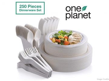 Eco-Friendly Biodegradable Dinnerware Set Image