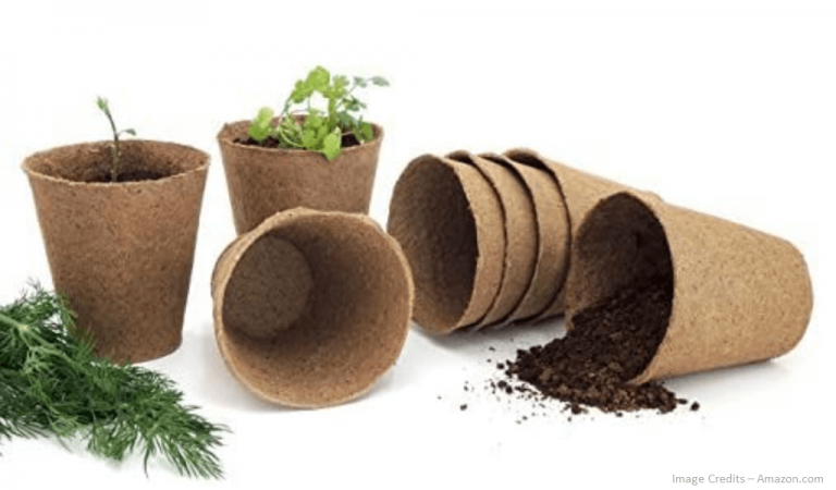 Eco-Friendly Peat Seed Starter Pots Image